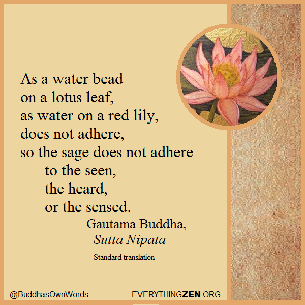 115 As a water bead on a lotus leaf.png