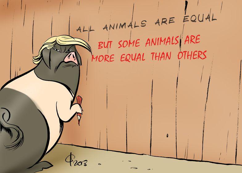 animal_farm__paolo_calleri.jpg