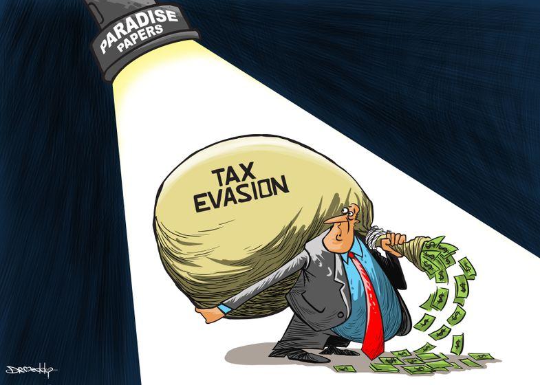 tax_evasion___dr_meddy.jpg